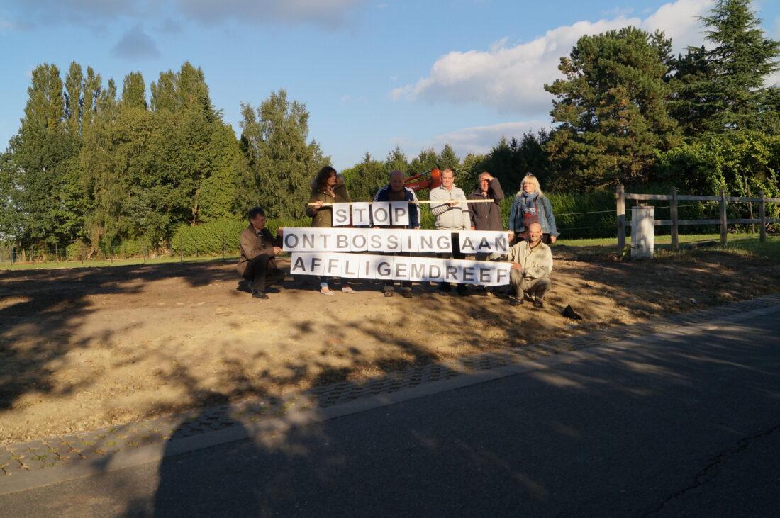 Bewoners Affligemdreef halen hun gelijk: 69 bomen worden niet gekapt