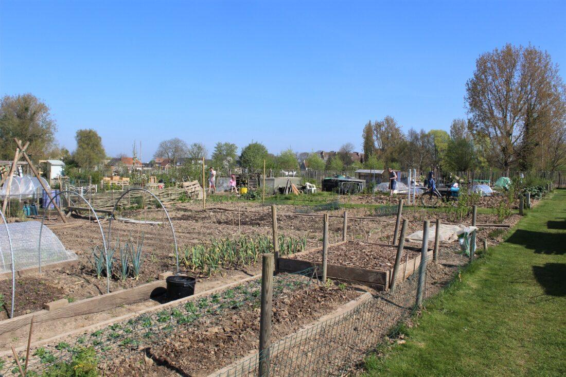 Stad zoekt boer(in) voor nieuwe zelfplukboerderij Hoezekouter